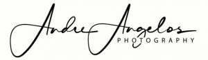 Hochzeitsfotograf logo 300x87 Hochzeitsfotograf Andre Angelos