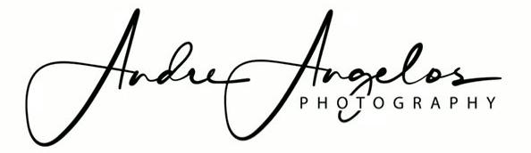 Hochzeitsfotograf Andre Angelos